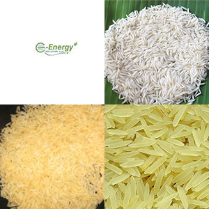 rice-page